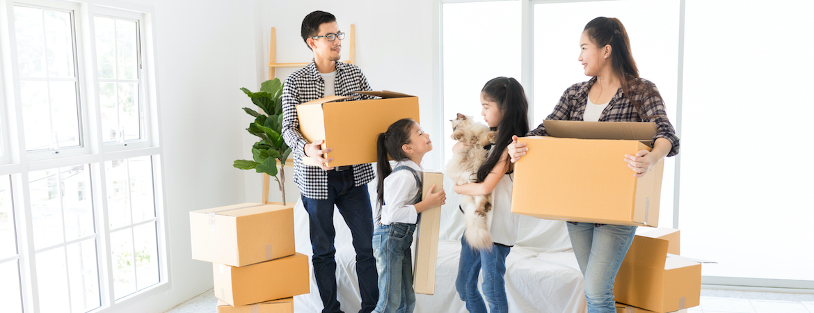 Singapore's Movers and Packers For a Stress-Free Office or House Move