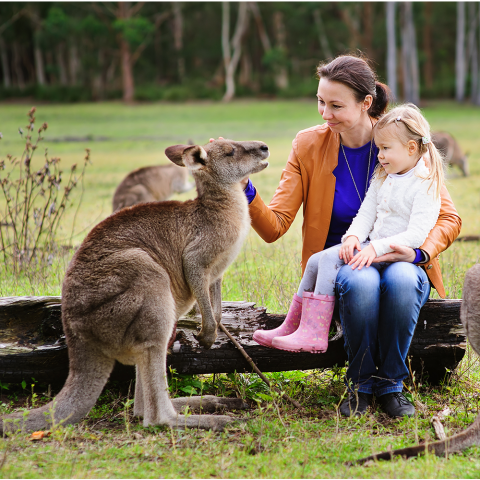 5 Tips to Book a Family Holiday to Fremantle and Swan Valley in Western Australia - Thumbnail